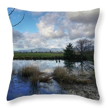 Throw Pillow featuring the photograph Flooding River, Field And Clouds by Chriss Pagani