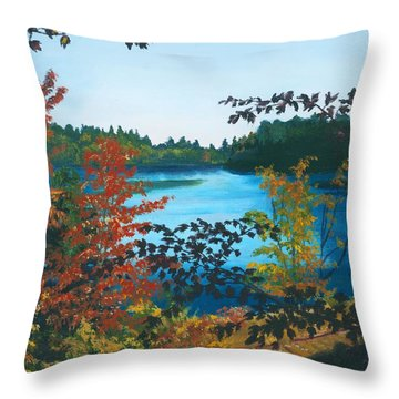 Throw Pillow featuring the painting Floodwood by Lynne Reichhart