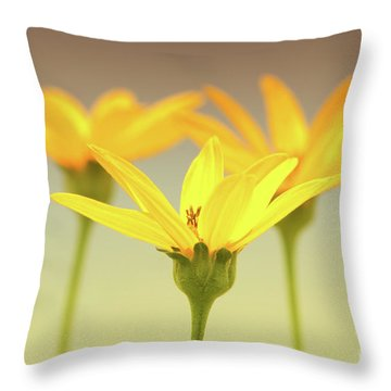 Floral Brilliance Throw Pillow by Anita Oakley
