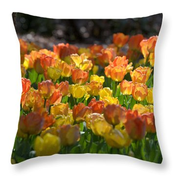Floral Brilliance Throw Pillow