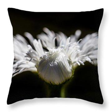 Floral Chiaroscuro Throw Pillow