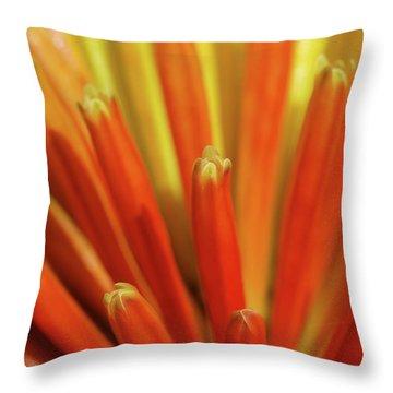 Floral Fireworks Throw Pillow