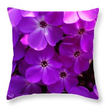 Floral Glory Throw Pillow by David Lane