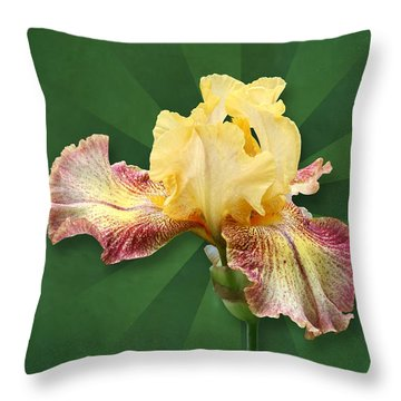 Floral Radiance Throw Pillow
