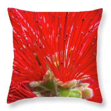 Floral Red Throw Pillow