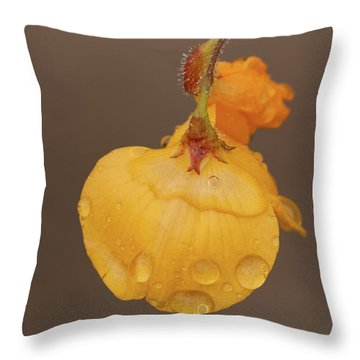 Florida Alicia Throw Pillow