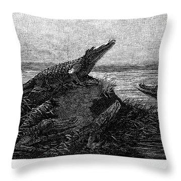 Florida Alligators, 1886 Throw Pillow by Granger