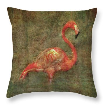 Throw Pillow featuring the photograph Florida Art by Hanny Heim