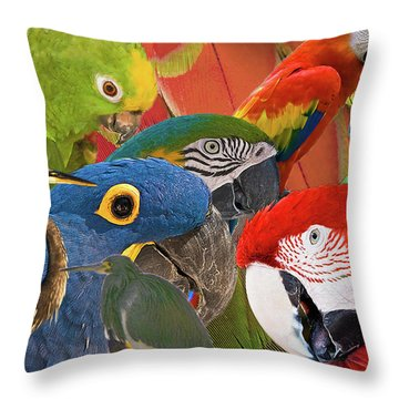Florida Birds Throw Pillow