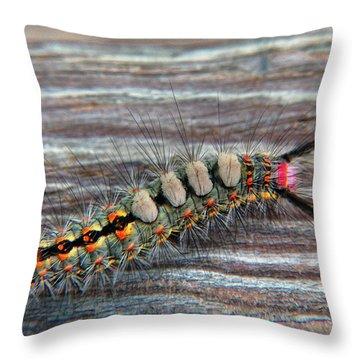 Florida Caterpillar Throw Pillow