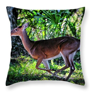 Florida Deer Throw Pillow