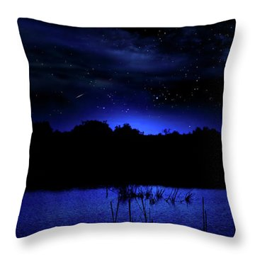 Florida Everglades Lunar Eclipse Throw Pillow