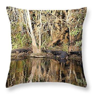 Florida Gators - Everglades Swamp Throw Pillow by Jerry Battle