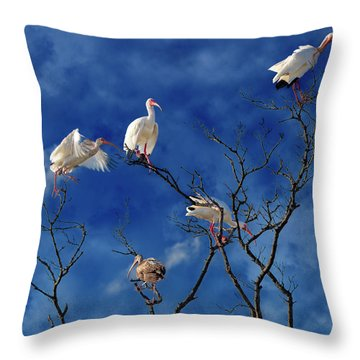 Florida Keys The Exaggerated Ibis Throw Pillow