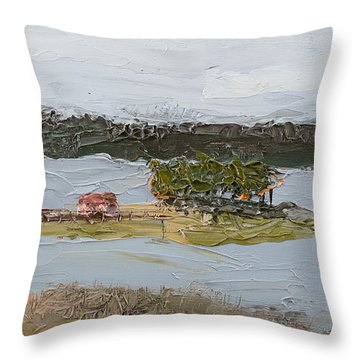 Florida Lake II Throw Pillow