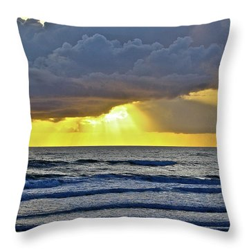Florida Morning Throw Pillow