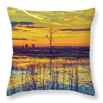 Florida Nature Paradise 2  Throw Pillow