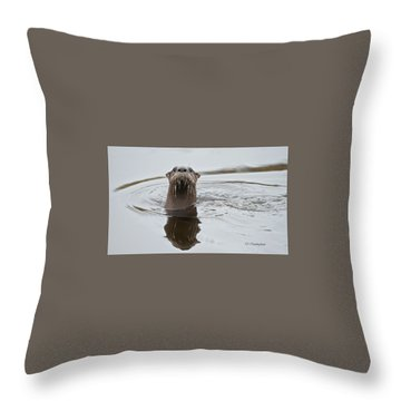 Florida Otter Throw Pillow