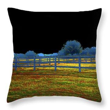 Florida Ranchland Throw Pillow