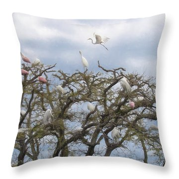 Florida Rookery Throw Pillow by Kelly Marquardt