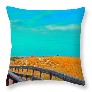 Throw Pillow featuring the photograph Florida Sand Dunes Atlantic New Smyrna Beach by Tom Jelen