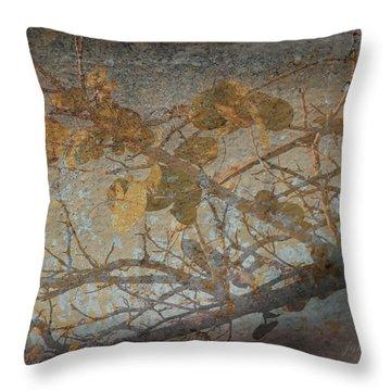 Florida Sea Grape Throw Pillow by Joseph G Holland