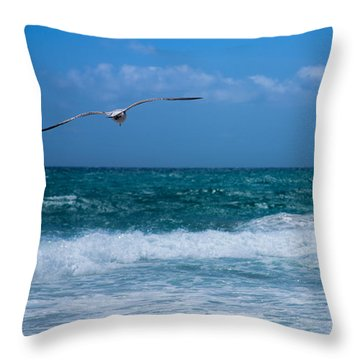 Throw Pillow featuring the photograph Florida Seagull In Flight by Jason Moynihan