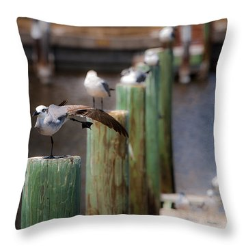 Throw Pillow featuring the photograph Florida Seagull Playing by Jason Moynihan
