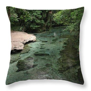 Florida Spring Run Throw Pillow by Peg Urban