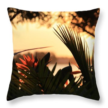 Throw Pillow featuring the photograph Florida Sunrise by Diane Merkle