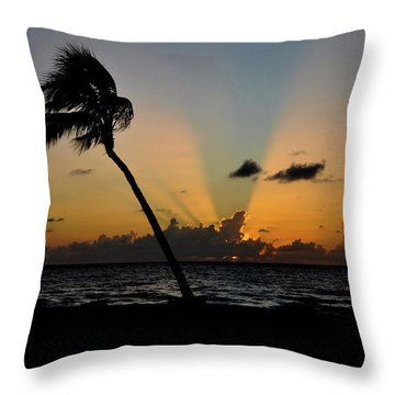 Throw Pillow featuring the photograph Florida Sunrise Palm by Kelly Wade