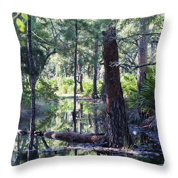 Florida Swamp Throw Pillow