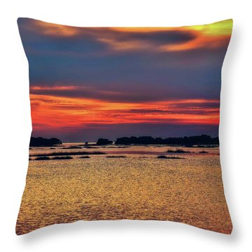 Throw Pillow featuring the photograph Florida West Coast  by Louis Ferreira
