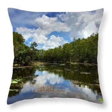 Florida Wetlands Throw Pillow