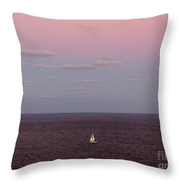 Florida Winter Throw Pillow