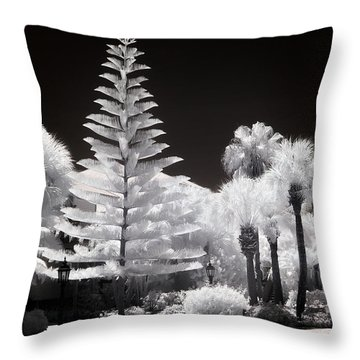 Floridian Flora Throw Pillow by Dan Wells