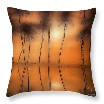 Floridian Waters Throw Pillow by Adam Olsen