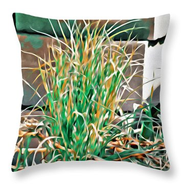 Throw Pillow featuring the photograph Flow  by Beauty For God