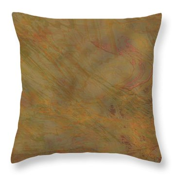 Flow Improvement In The Sand Throw Pillow