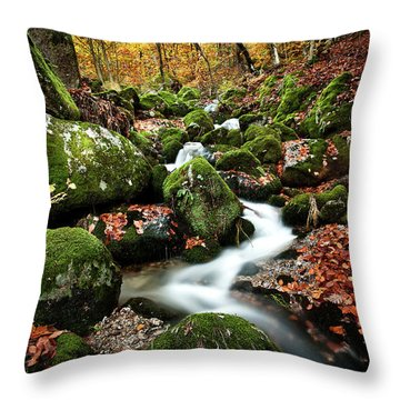 Flow Throw Pillow by Jorge Maia