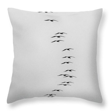 Flow Of The Pelican Throw Pillow