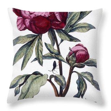 Flower, 1730 Throw Pillow