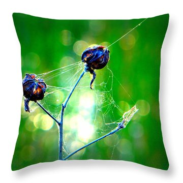 Throw Pillow featuring the photograph Flower 3 Spiderweb  by David Mckinney