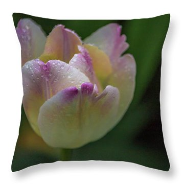 Throw Pillow featuring the photograph Flower 654853 by Timothy Latta