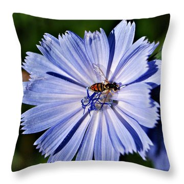 Flower And Bee 2 Throw Pillow