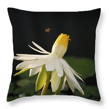 Flower And Bee In Singapore Throw Pillow