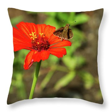 Throw Pillow featuring the photograph Flower And Friend by Arthur Dodd