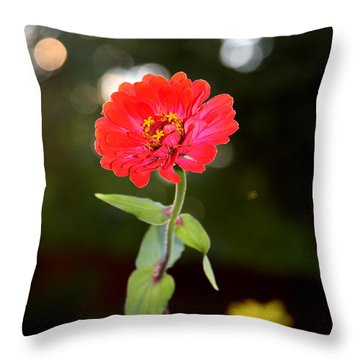 Throw Pillow featuring the photograph Flower And Hope by Vadim Levin