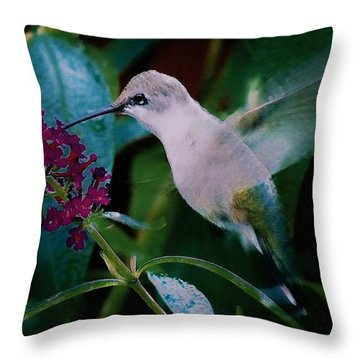 Flower And Hummingbird Throw Pillow