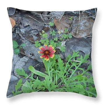 Flower And Lizard Throw Pillow by Kay Gilley